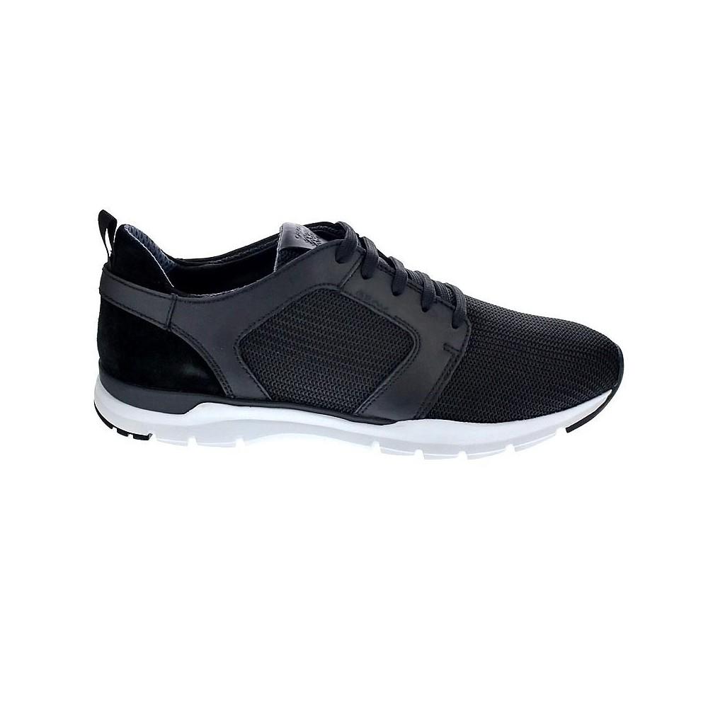Geox Calar  Zapatos con cordón  Hombre